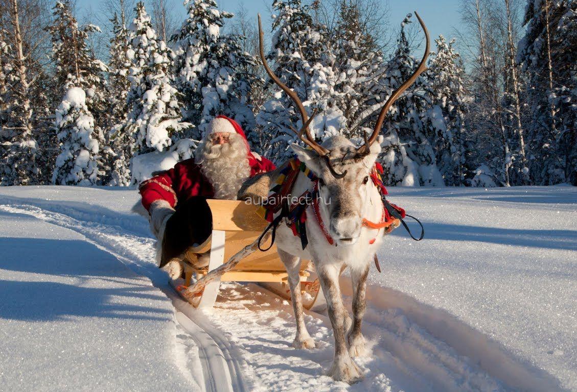 Ahol Szentestén a rénszarvasoknak is terítenek -  Angol karácsony egy au pair szemével
