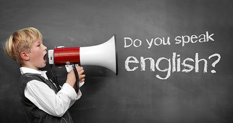 Milyen nyelvtudás szükséges?