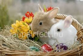 What is the origin of the Easter bunny and Easter eggs?